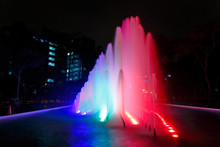 Beautiful View Of A Colorful W...