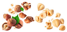 Hazelnuts Crushed Into Pieces, Frozen In The Air.