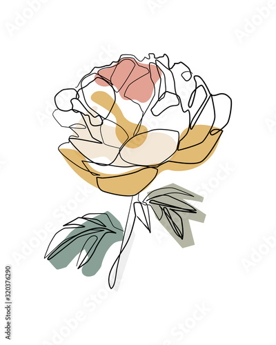 Photo Bouquet of peony in one line art drawing style