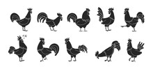Cock Of Animal Isolated Black,...