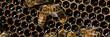 pszczoły robotnice