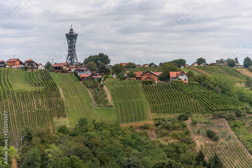 Fototapeta The view of Lendavske Gorice with wine yards