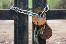 Two Rusty Padlocks And Metal Chain On The Closed Park Gates