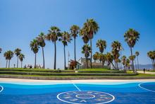 Sunny Spirit In California At ...