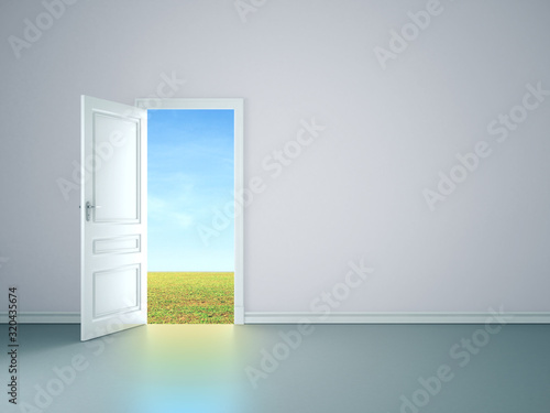 Fototapeta White room interior with open door tofield. obraz