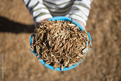 Valokuva child holding wood chips in blue bowl