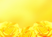 Banner With Three Yellow Roses