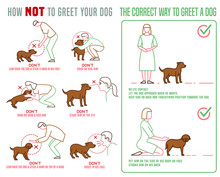 Dog Greetings Poster
