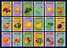 Tropical Fruits Farm Market Price List Cards. Vector Natural Apple, Pear And Pomegranate, Lemon And Orange Citrus Fruits, Exotic Mango And Watermelon, Apricot And Pineapple, Banana And Grape With Plum