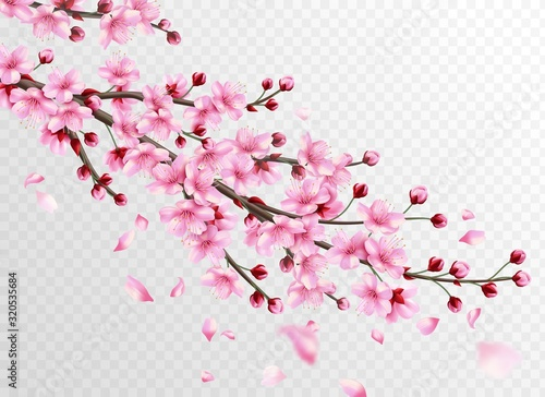 Realistic sakura Wallpaper Mural