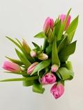 Fototapeta Tulipany - bouquet of pink tulips