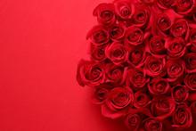 赤い薔薇の背景素材