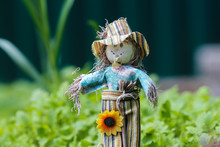 Toy Scarecrow In The Garden On...