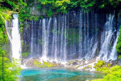 初夏の白糸ノ滝 © tenjou