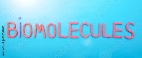 Inscription biomolecule in red letters on a blue background Canvas Print