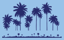 Set A Silhouette Of Palm Trees Against The Background Of