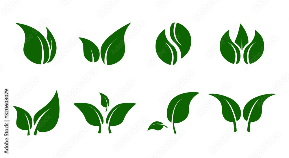 Green leave iconset. Eco elements and shapes of leaves and plants isolated on white background. Vegan bio natural logos, vector illustration