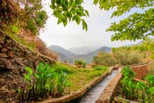 Paisaje Rural Naturaleza Monte...