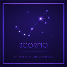 Sign Of The Zodiac With A Signature. Star Scorpio. Template For Flyers Of Fortune-telling Cards, Predictions, Advertising, Sales, Horoscopes