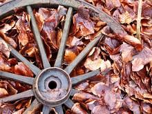 Old Vintage Wheel On Pile Of W...