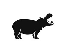 Hippopotamus  Logo. Isolated H...
