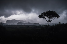 Moody Landscape Views Of The M...
