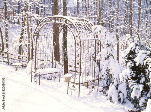 Garden Arbor covered in snow sits vacant on the edge of a forest creating a peac Wallpaper Mural