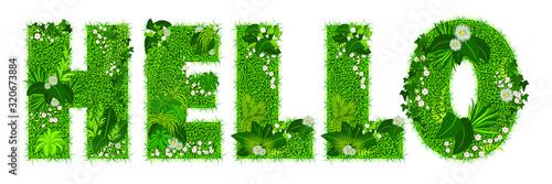 Fotografie, Obraz Mot «hello» composé de lettres florales - illustration vectorielle d'un gazon fleuri