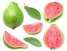Isolated Guava. Collection Of ...