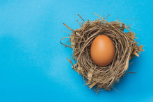 Eggs In The Nest On A Blue Bac...