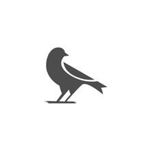 Canary Bird Logo Design Vector Illustration.