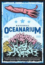Oceanarium, Underwater Wild Li...