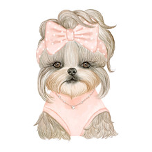 Adorable Puppy Dog Cute With R...
