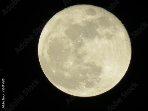 Luna Fototapet