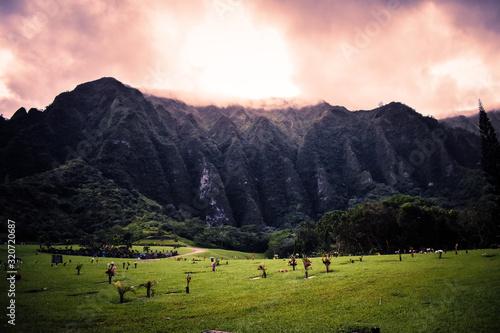 Hawaiian Cemetery