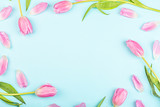 Fototapeta Tulipany - View from above tulips with copy space on blue. Background for womens day, 8 March Valentines day, 14 february. Flat lay style, top view, mockup, template, overhead. Greeting card