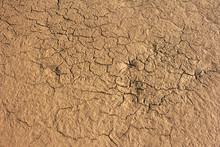 Dries Cracked Mud Natural Back...