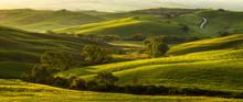Impressive Spring Landscape,vi...