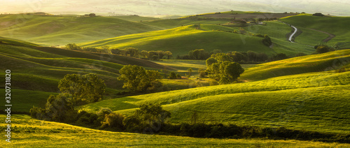 Impressive spring landscape,view with cypresses and vineyards ,Tuscany,Italy Fototapet