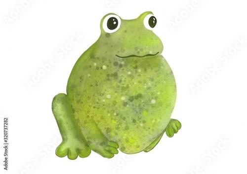 Canvas Print La grenouille verte au gros ventre tachetée de jaune.