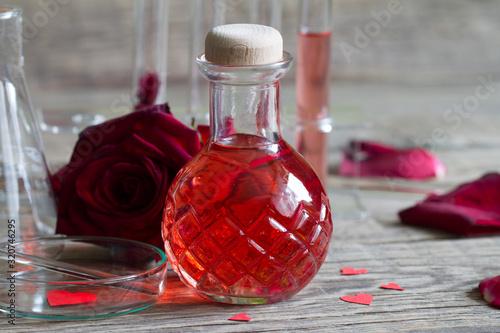 Love potion magic elixir alchemy, valentine's day concept Canvas Print