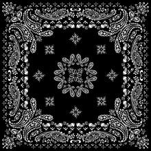 Paisley Textile Pattern Vector...