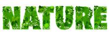 Mot «NATURE» Composé De...