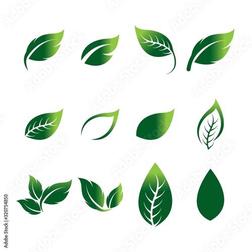 Obraz Green leaf ecology nature element vector icon - fototapety do salonu