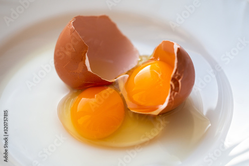 Double yolk of a broken egg on a white plate Canvas Print