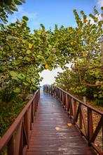 Wooden Bridge To The Atlantic ...