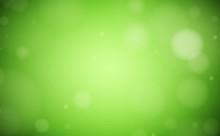 Green Lush Bokeh Background Wi...