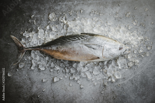 Photo Longtail tuna , Eastern little tuna fish / Fresh fish on ice in the market - Raw