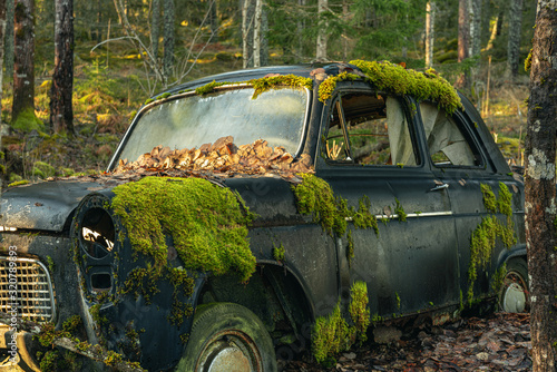 Photo Mossy old car abandoned in a forest in Sweden
