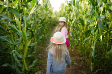 Two Cute Young Girls Having Fun In A Corn Maze Field During Autumn Season. Games And Entertainment During Harvest Time.